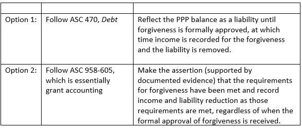 PPP Borrowing: For-Profit vs Not-For-Profit